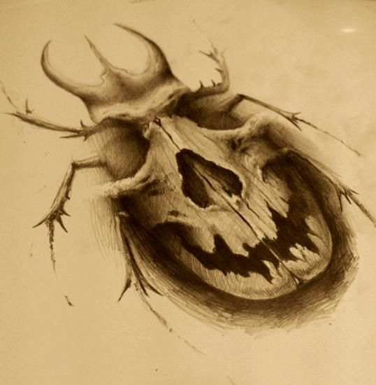 Drawn skull vector Best Pin images and Andrey