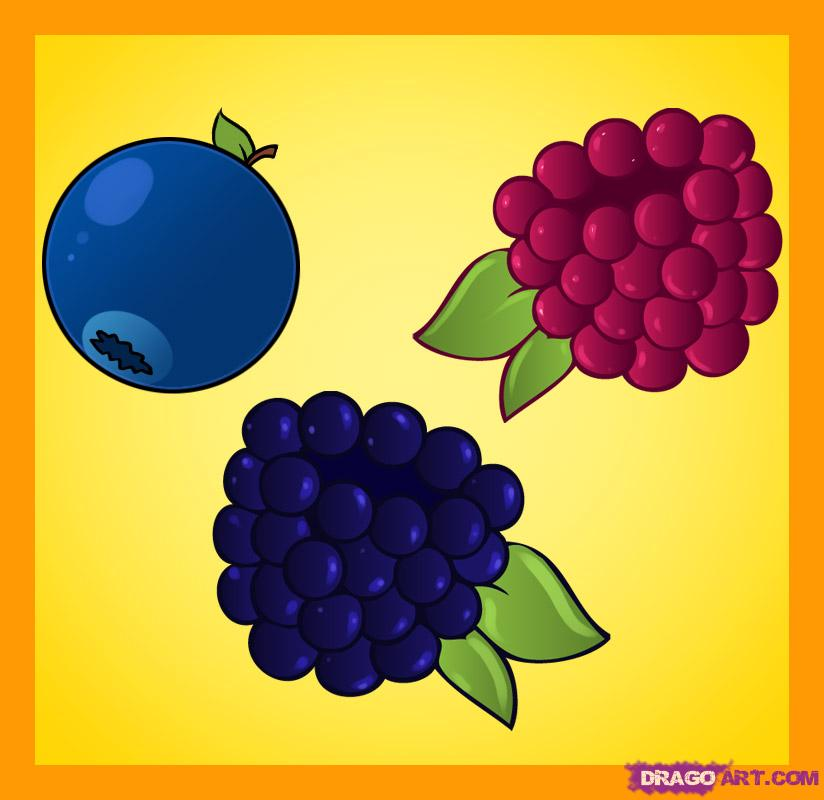 Drawn berry Draw berries by Culture draw
