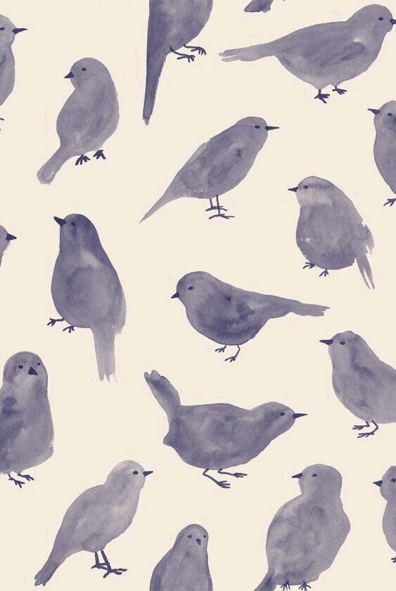 Drawn brds grunge Cute bird bird aves art