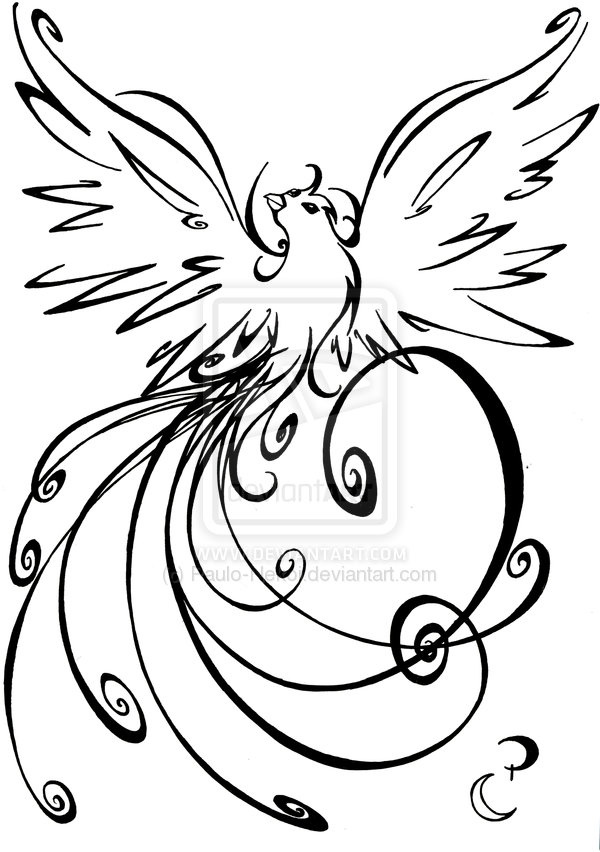 Drawn brds paradise Tattoo ideas Best Bird on