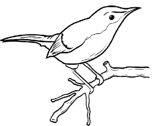 Parrot clipart tree drawing Coloring Tree On Little Page