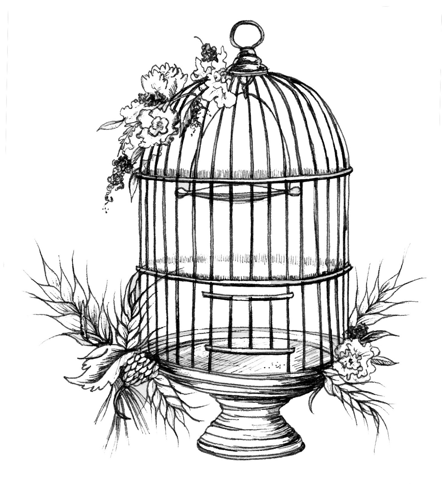 Drawn birdcage Wedding & Birdcages Rustic Stationery