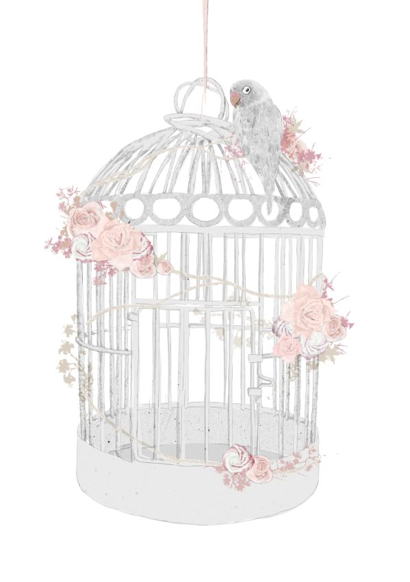 Drawn birdcage 25+ Birdcage best Birdcage ideas