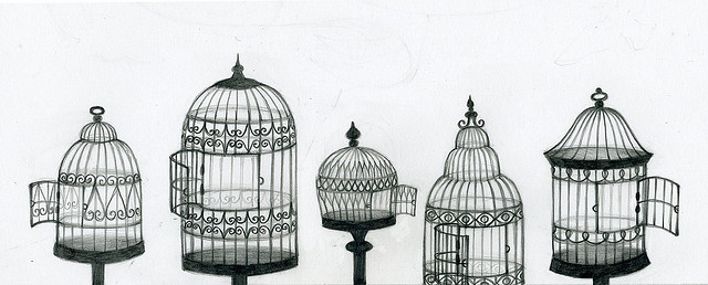 Drawn birdcage Cage images Illustration Bird Illustration