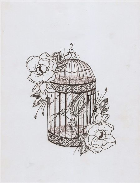 Drawn birdcage Pinterest Pop 10 beauty best