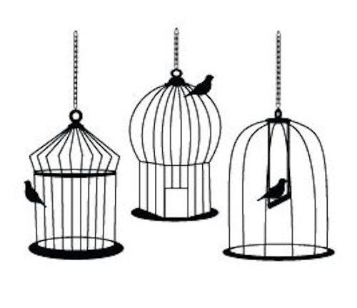 Drawn birdcage Obrazów Illustrations temat: Cages Hawaii