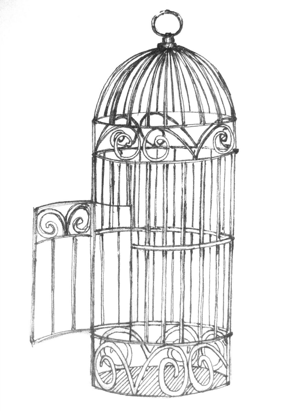 Drawn birdcage Bird dogs animals cats and
