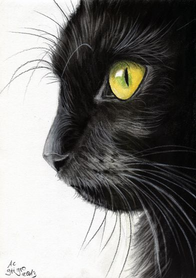 Drawn black cat Drawing Más cat ideas on