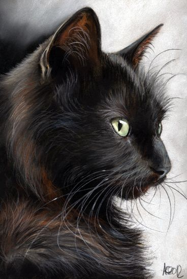 Drawn black cat Groß German Griehl Black More
