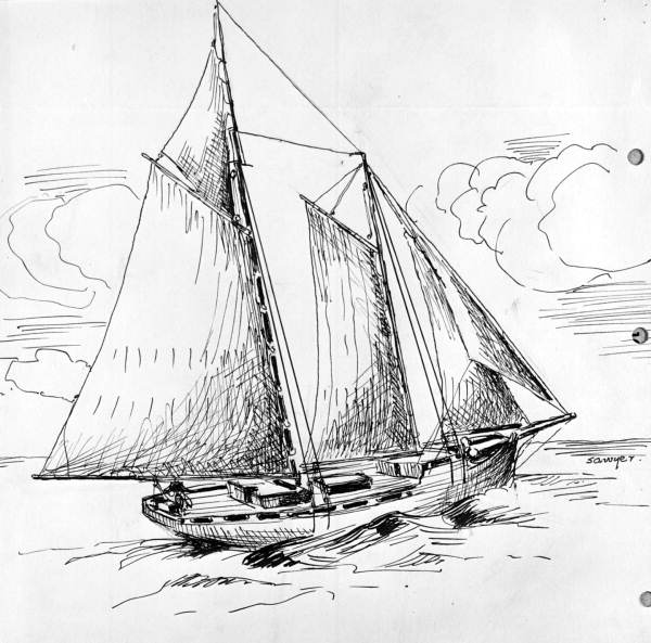 Drawn boat Boat Ayers old snapper snapper