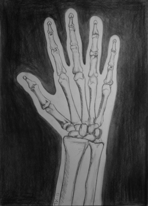 Drawn skeleton hand drawn Hand  On Drawing Skeleton