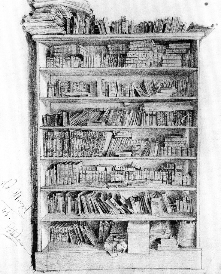 Drawn bookcase #4