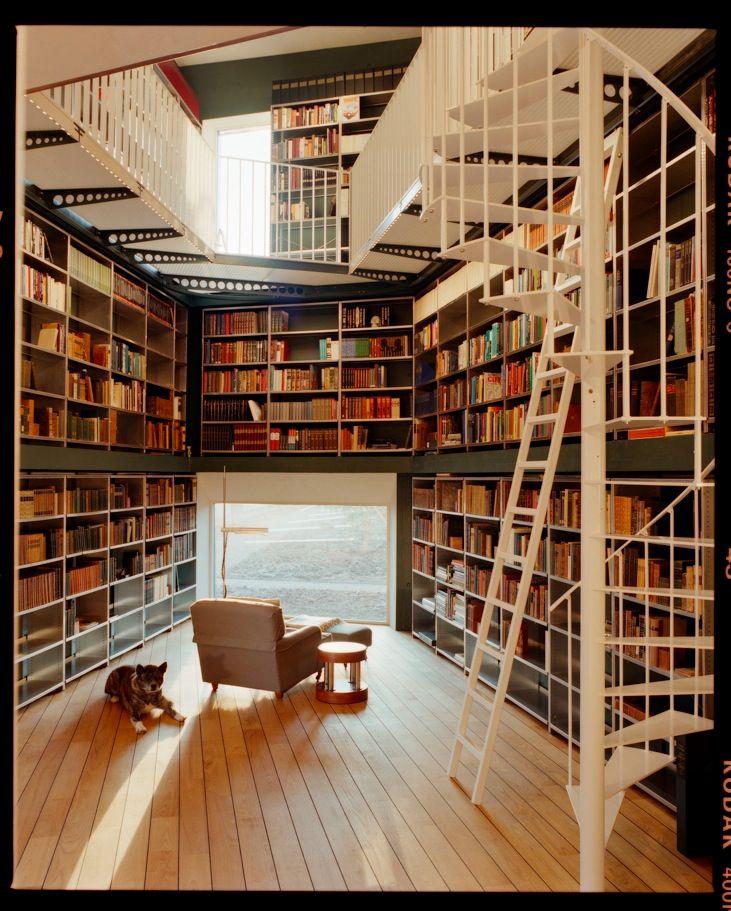 Drawn bookcase giant Envy & more Libraries Bookshelves