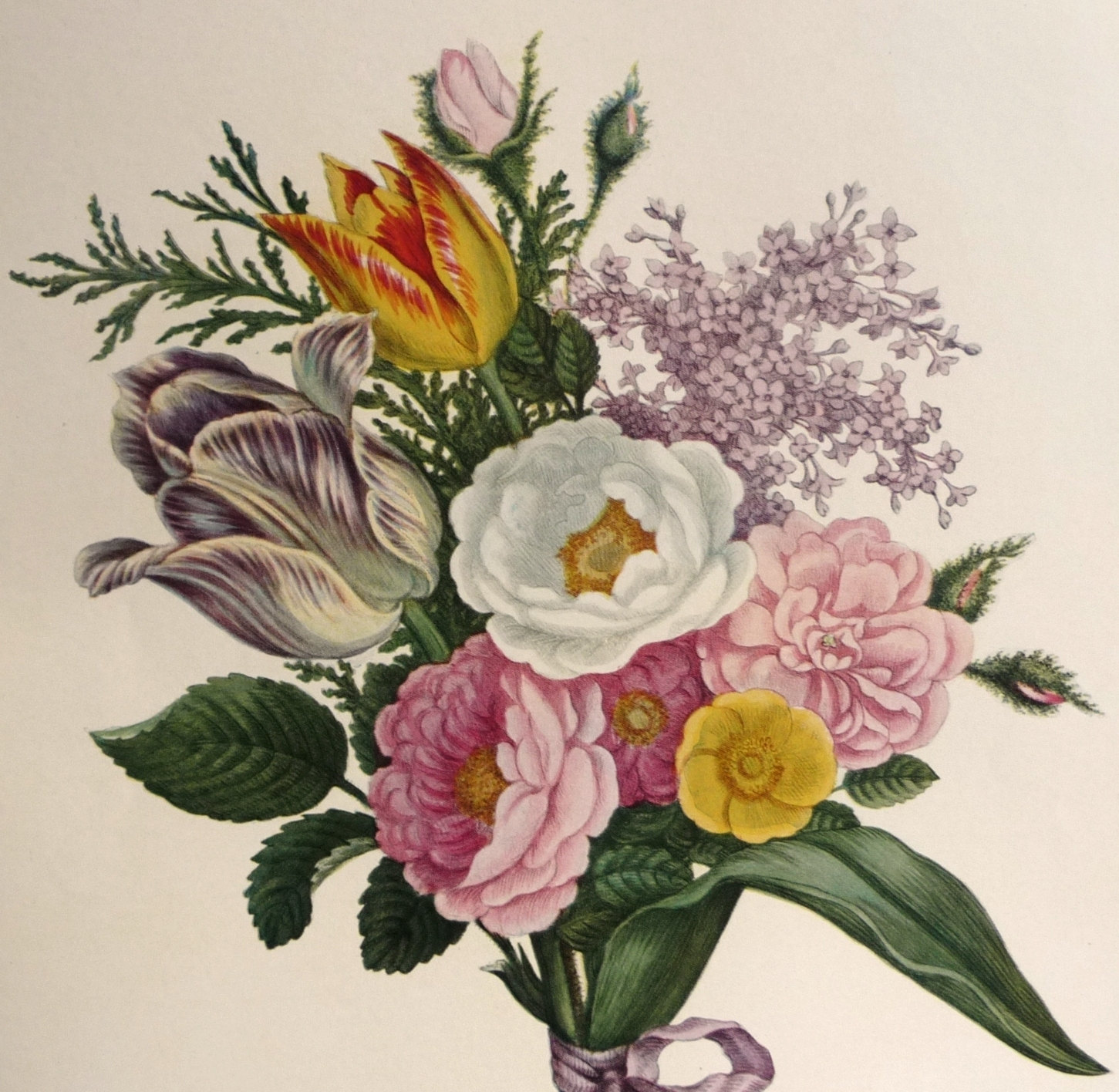Drawn vintage flower bouquet More Botanical this and Illustration
