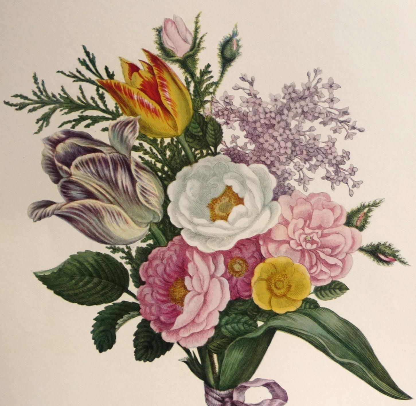 Drawn vintage flower free hand drawing Pinterest vintage Botanical Pin and