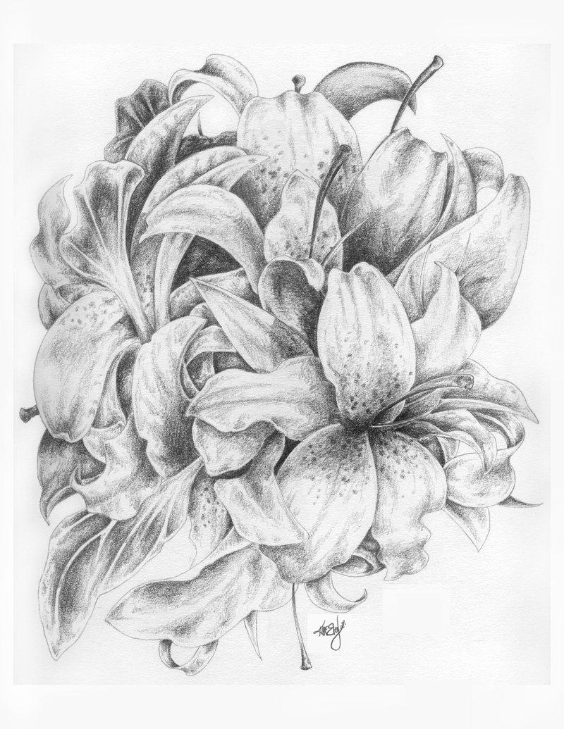 Drawn bouquet lily bouquet #2