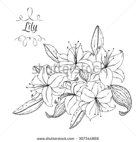 Drawn bouquet lily bouquet #5