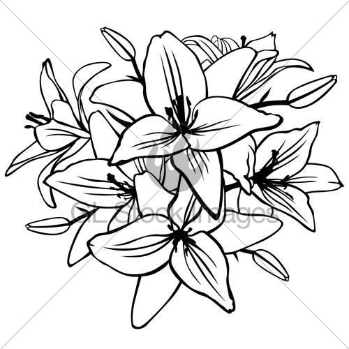 Drawn bouquet lily bouquet #7