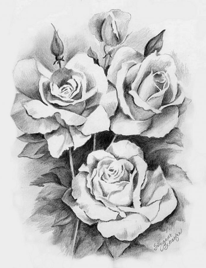 Drawn bouquet lily bouquet #6