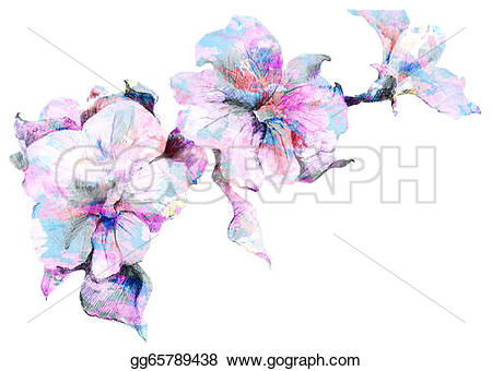 Drawn bouquet petunia #4