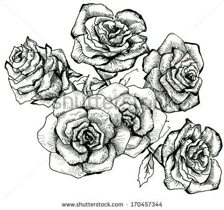 Drawn bouquet realistic Drawing