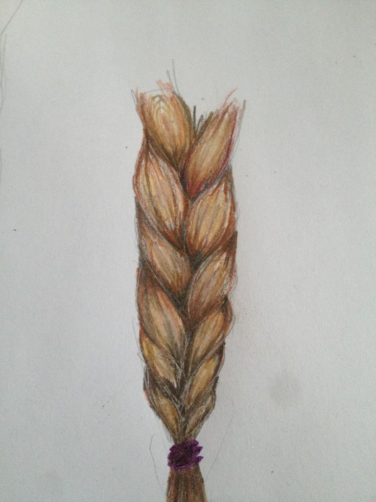 Drawn braid colorful And drawings subjects best 29