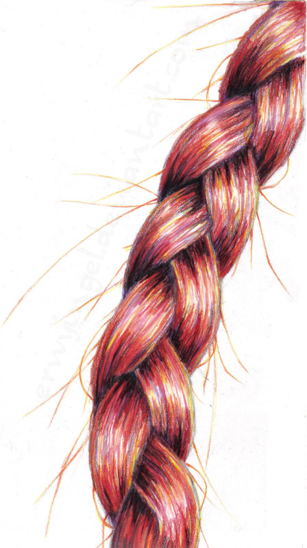 Drawn braid coloring hair Braid DeviantArt Erwyingel by Analogous