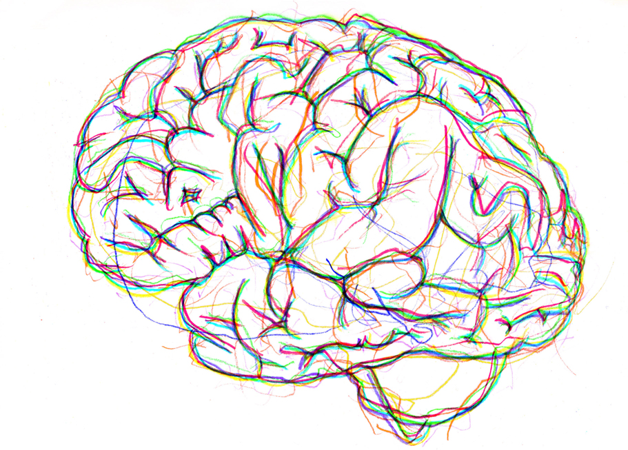 Drawn brain Brain Cunliffe Brain Lizzy »