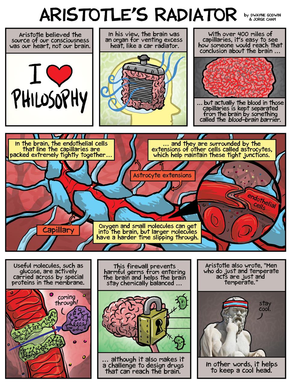 Drawn brain comic At Eat be various by
