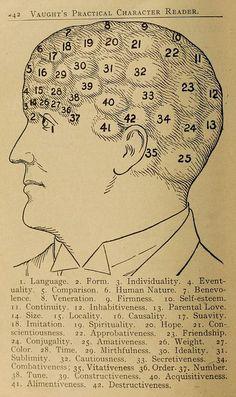 Drawn brain public domain #6
