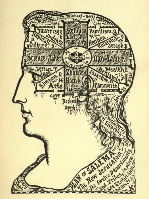 Drawn brain public domain #3