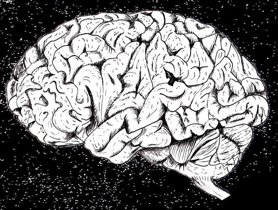 Drawn brain tumblr transparent I a major Dudes