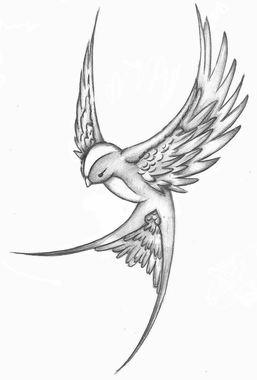 Drawn sparrow detailed Designs Wings Designs Tattoo foot