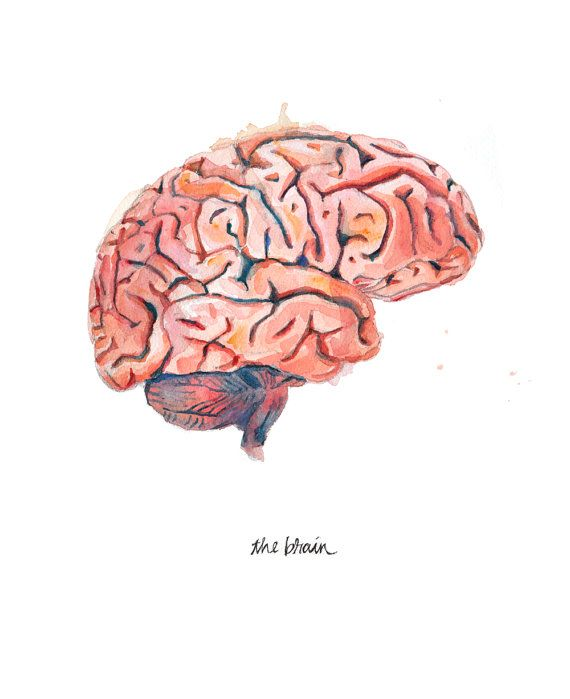 Drawn brain simple #2