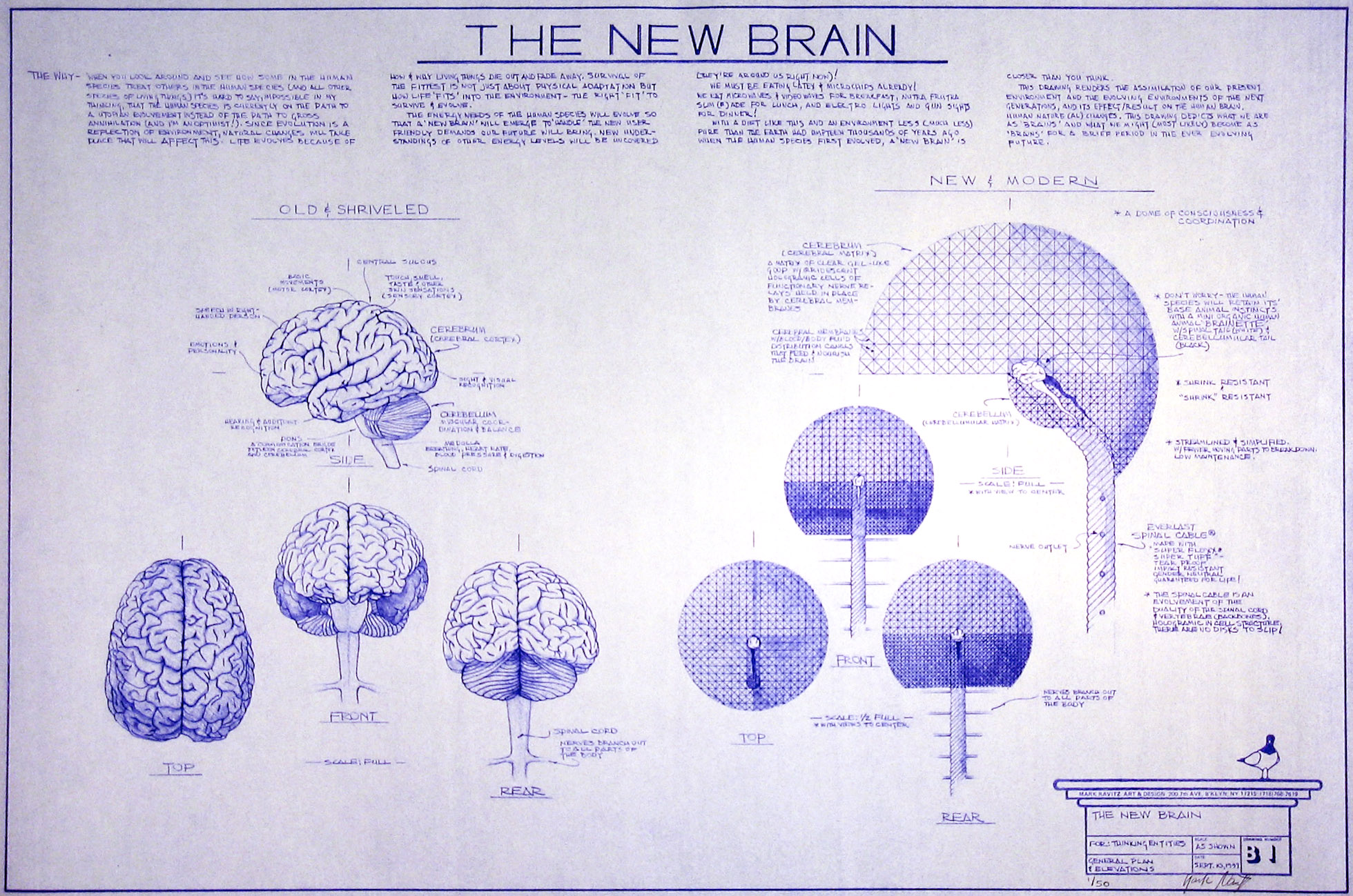 Drawn brains blueprint New Drawings Blueprint & Drawings