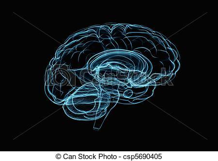 Drawn brains clipart background Brain black of Brain model