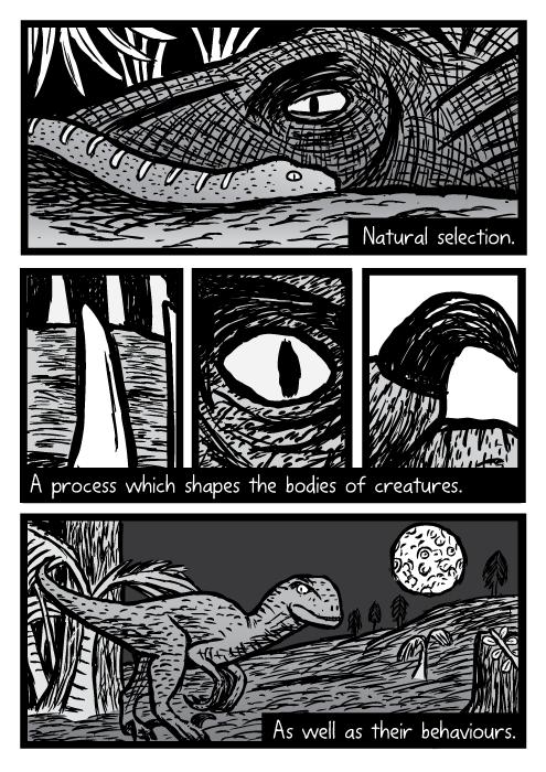 Drawn brain comic Brain comics reptile comic Supernormal