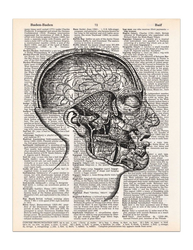 Drawn brains dissection Mouth Head Drawing Dictionary