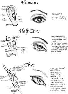 Drawn brains eye When the I Brain Front