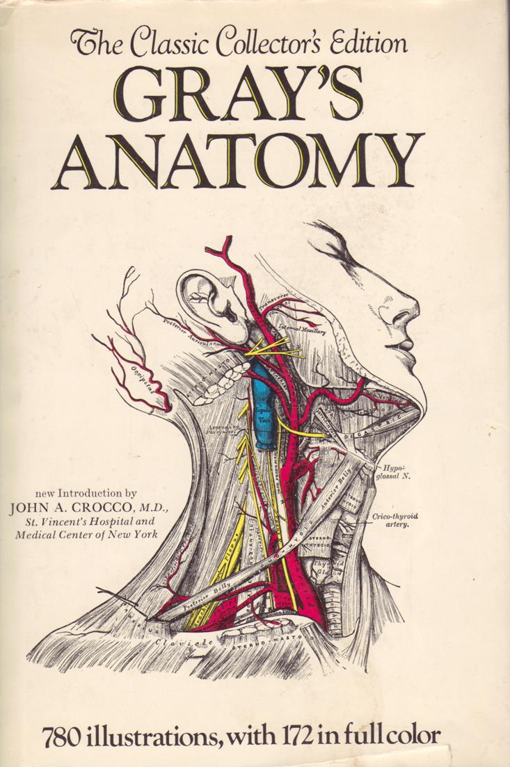 Drawn brains gray's anatomy Part Beyond Lovecraftian Pineal melatonin