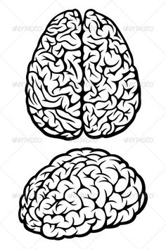 Drawn brain outer view Illustration Brain Brain Brain Pinterest