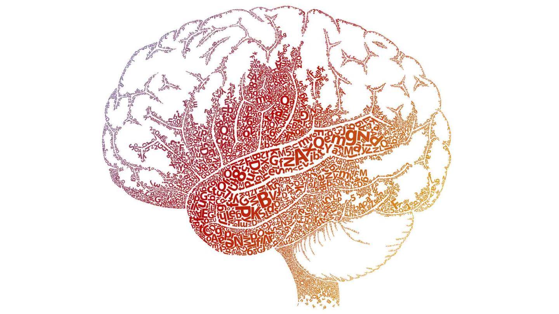 Drawn brain kid In the Understanding and Brain