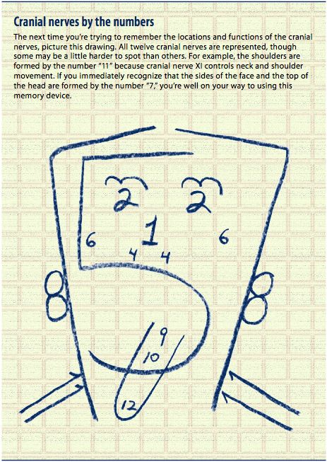 Drawn brain mad scientist By Cranial I best Neuro