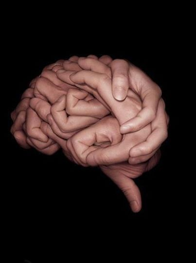 Drawn brains neuroscience This Plastic Joseph 20 nature