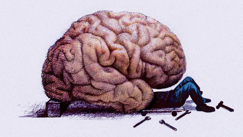Drawn brains not Turn Motivation That Motivation to