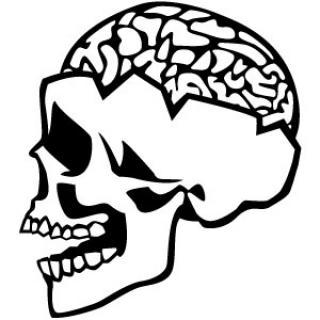 Drawn brain skull #2