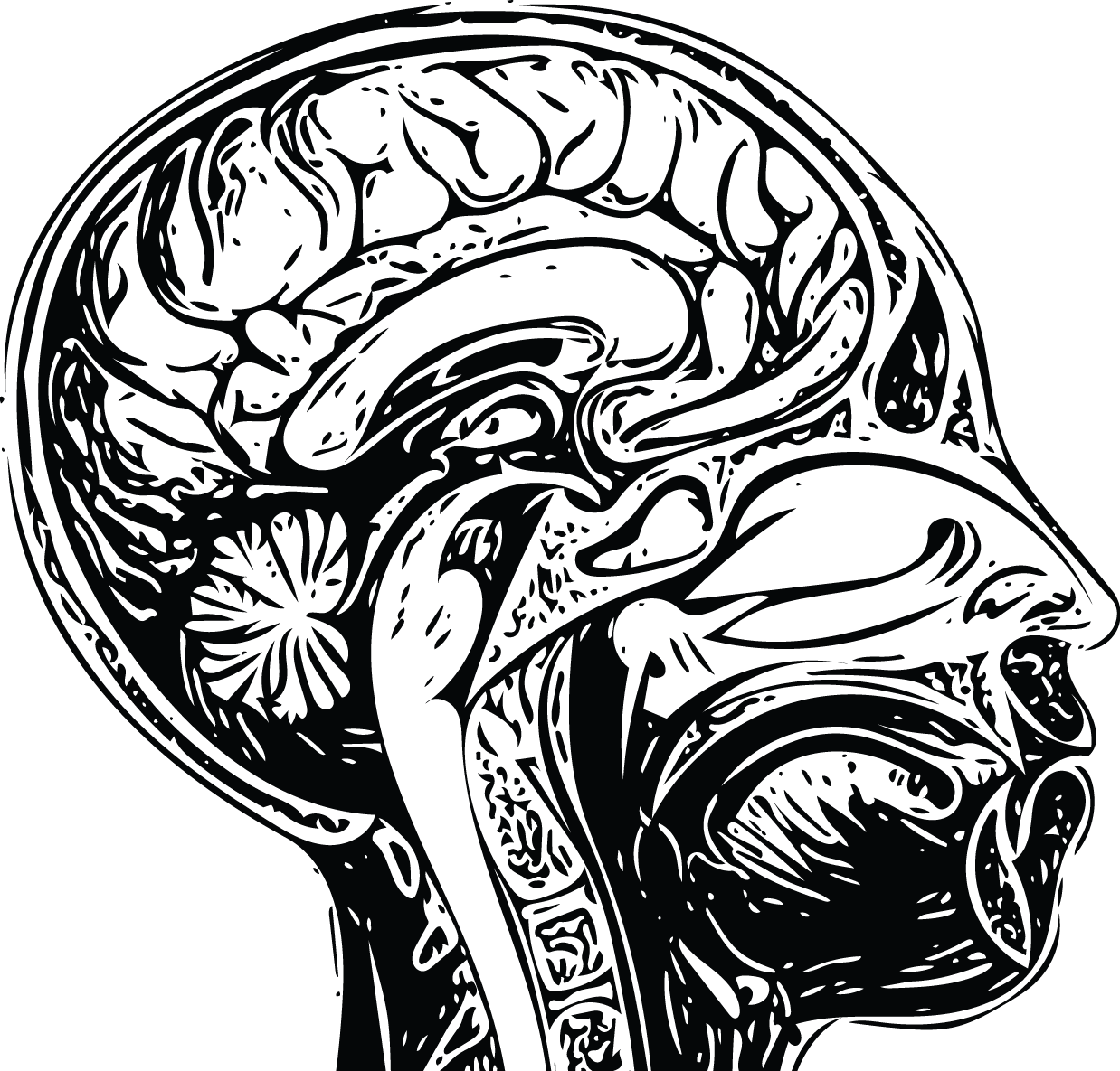 Drawn brain open minded #7