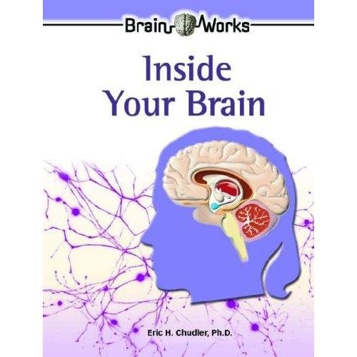 Drawn brains student Neuroscience 0791089444 Reading Publishers Kids