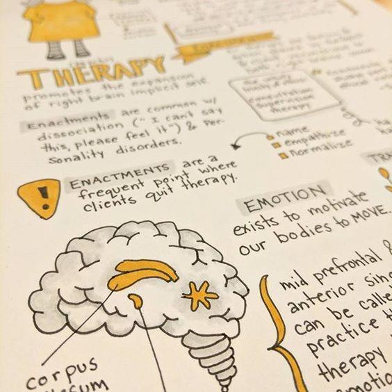 Drawn brains student Doodler and drawn  doodler