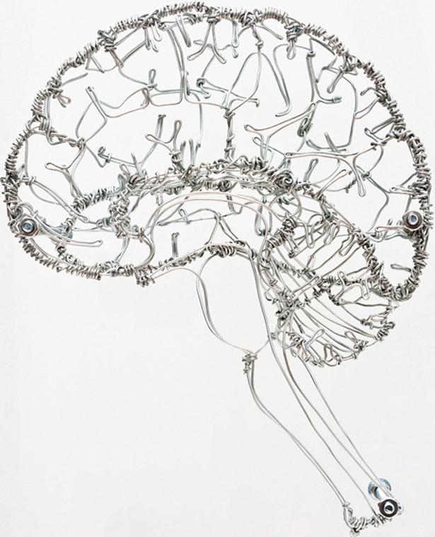 Drawn brains tumblr transparent  a Carbajal year foundation